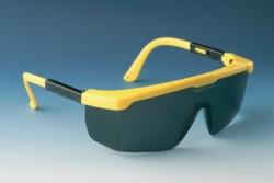 Search EKASTU Safety GmbH (1119)-Safety eyeshields CLAREX