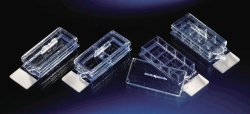 Search Thermo Elect.LED GmbH (Nunc) (8478)-Microscope slide Lab-Tek™ Chamber Slide™ System, PS