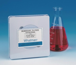 Membrane Filters, Cellulose nitrate, WCN LLG WWW-Catalog
