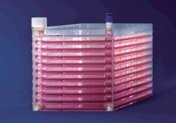 Chambre de culture cellulaire EasyFill™ avec surface traitée Nunclon™D, en PS, stérile WWW-Interface