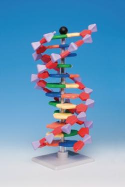 Molekülbaukastensystem miniDNA® / RNA Kits