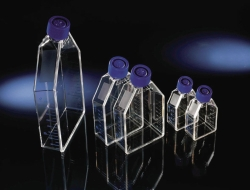 Zellkulturflaschen EasYFlask™, behandelt, PS/HDPE, steril