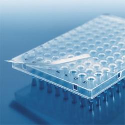 Paket BRAND® Premium-PCR-Platten + BRAND® PCR-Verschlussfolie